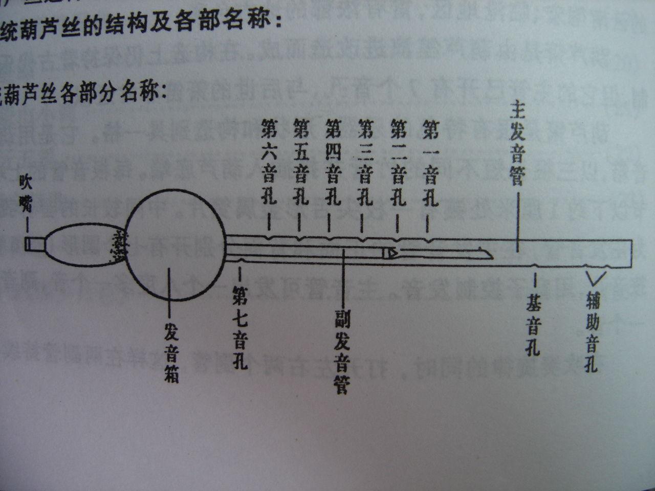 葫芦丝指法表图片