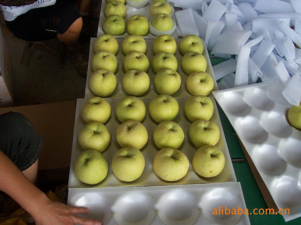 价廉新鲜绿色无公害黄金梨苹果【图】物美价廉