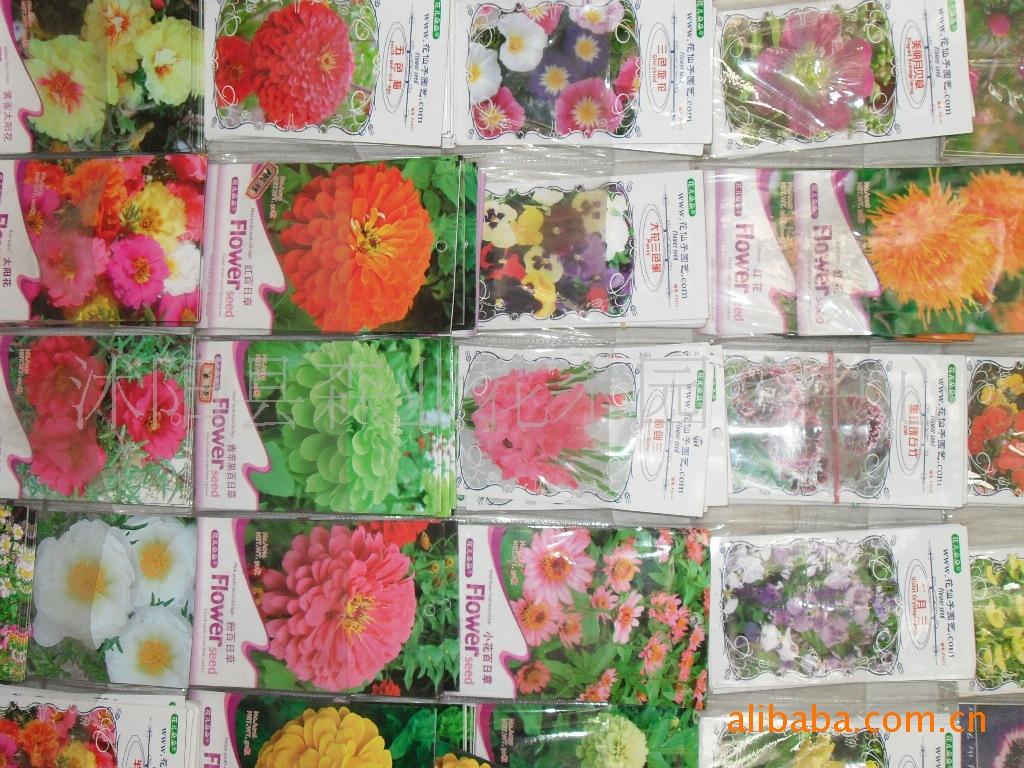 低价供应各种绿化苗木,花卉种子