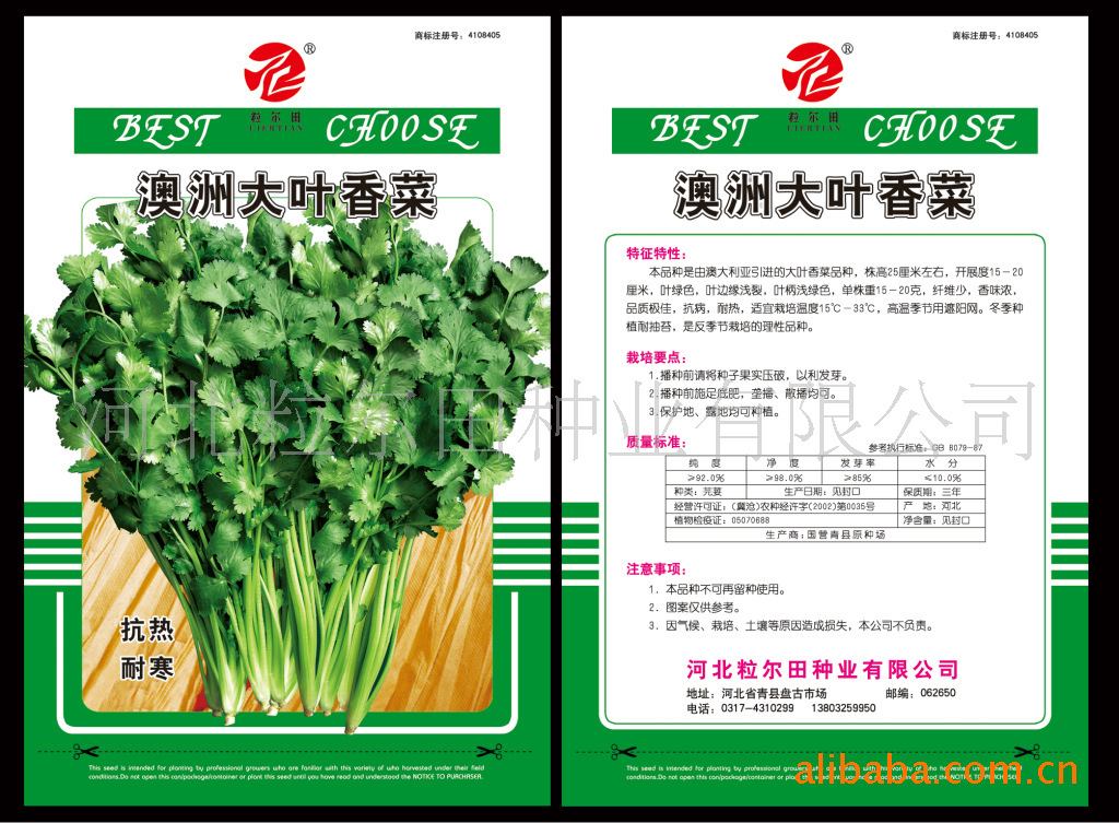 供给蔬菜种子叶菜类种子优良香菜种籽粒尔田澳洲大叶香菜种子