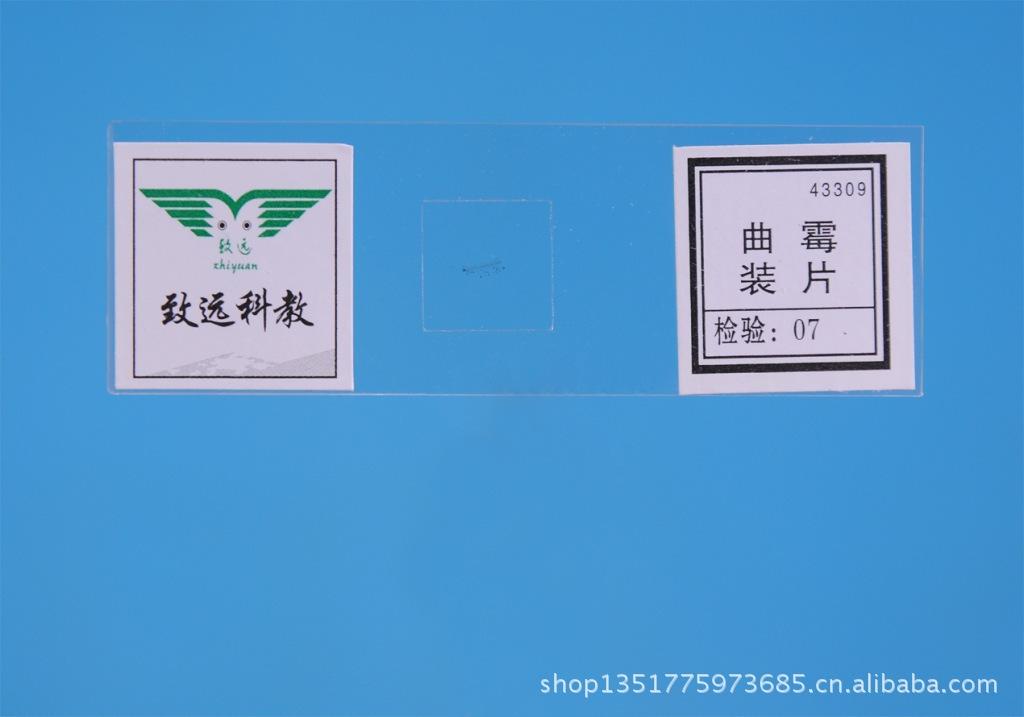 【显微镜定语标本教学仪器初中生物切片4330英语从句玻片初中图片