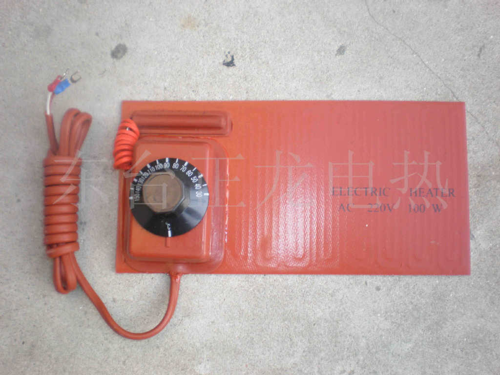 厂家供应带温度传感器硅橡胶加热板图片_6