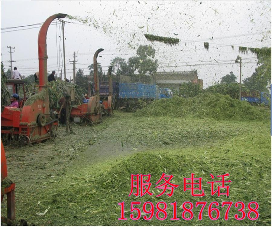 供应铡草粉碎机 秸秆粉碎机 豆秧粉碎机铡草机 多功能铡草机