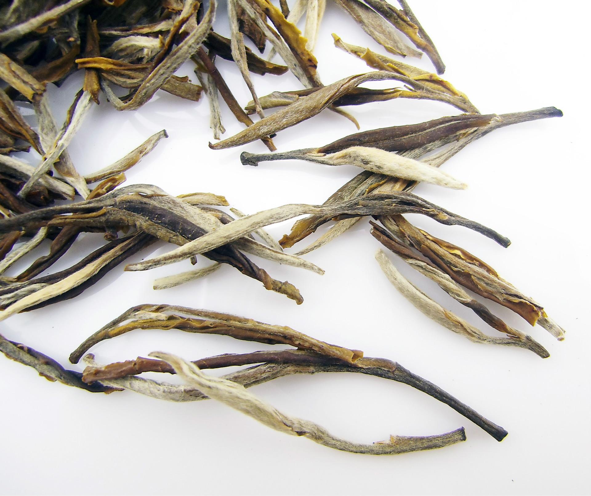广西横县茉莉花茶批发 茶叶厂家 茉莉花茶 浓香茉莉 凤尾针图片