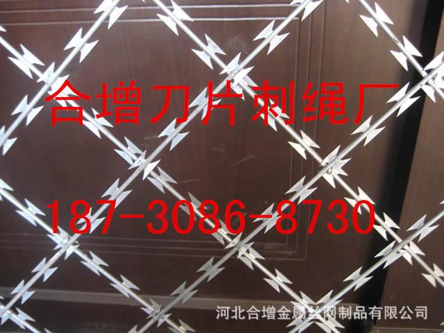 防护栅栏_防护栅栏供货商_供应刮刀型刺丝刺网防护栅栏_防护网