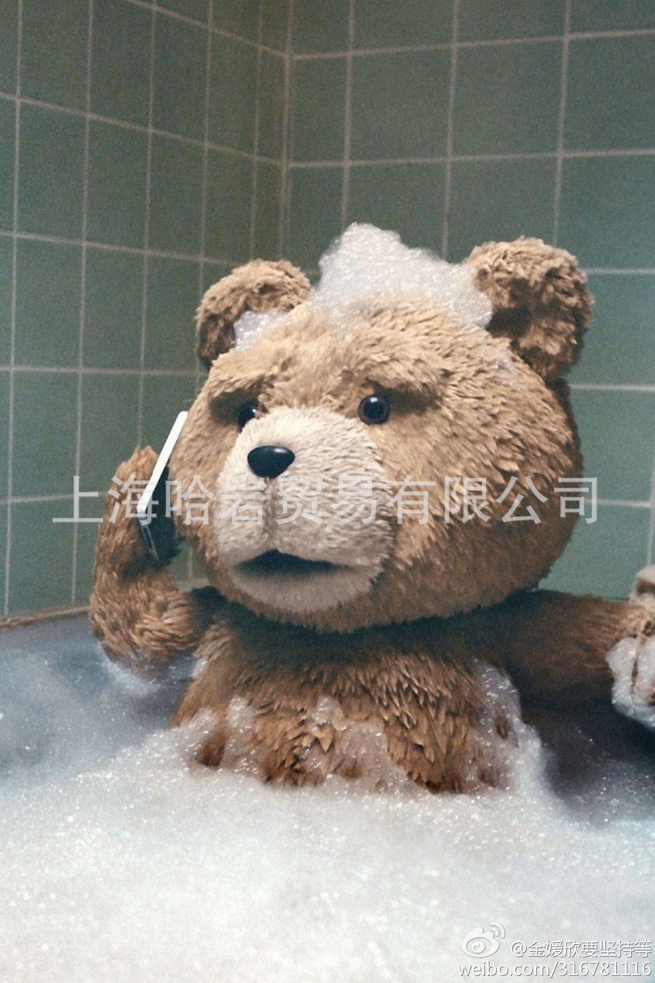 美国电影泰迪熊ted_美国电影泰迪熊ted_电影泰迪熊ted萌贱熊_电影