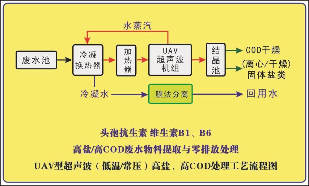 抗生素生产工艺流程_抗生素厂家生产供应替代抗生素工艺流程技术