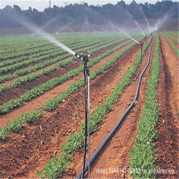 ***厂家销售灌溉喷水控制设备 批发大棚微喷 农田自动灌溉设备