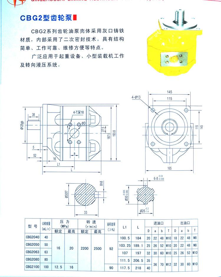 齿轮泵-(6)