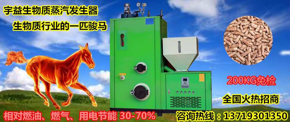 供应生物质蒸汽锅炉 生物质热水锅炉